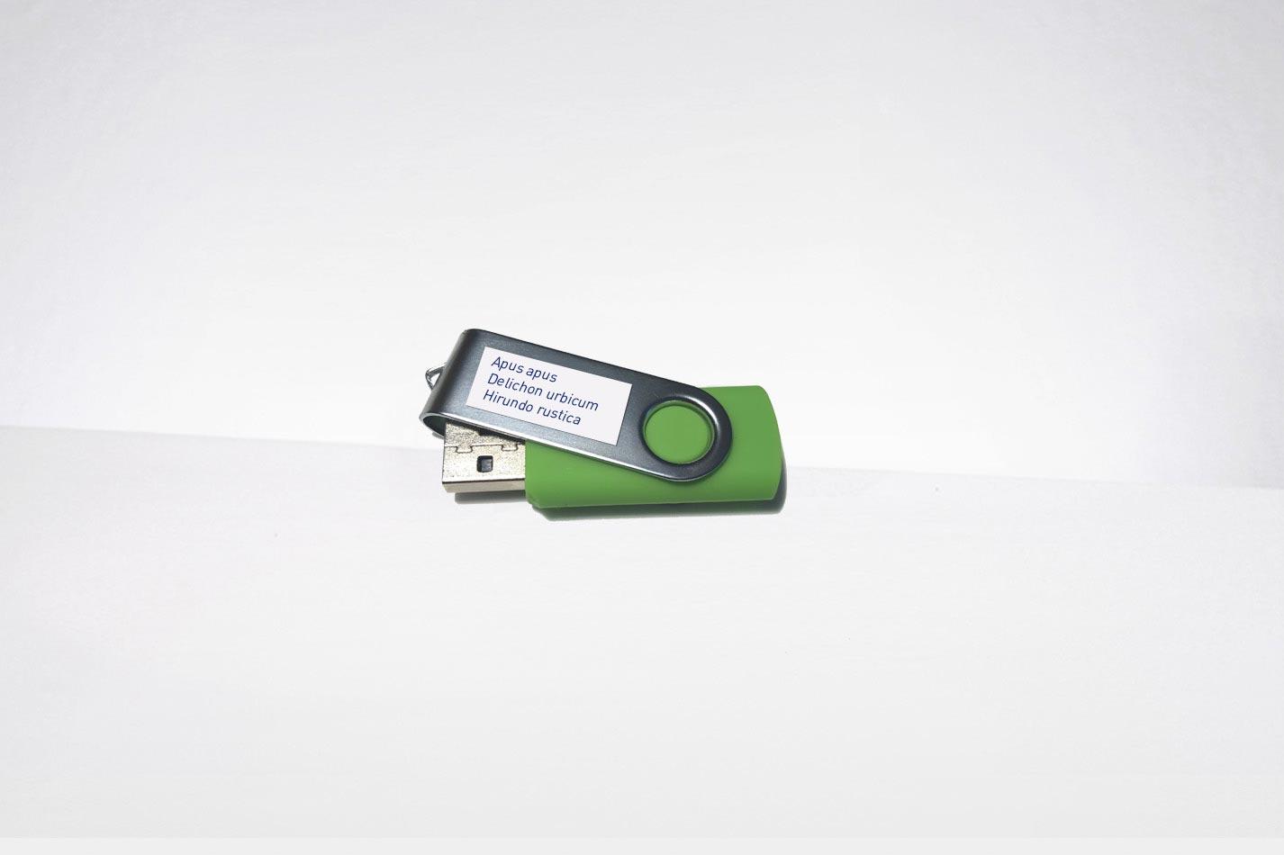 USB Stick in grün mit Vogelrufen für eine Klangattrappe